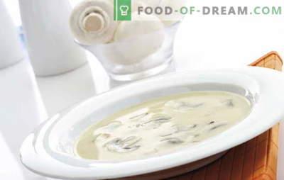 Supa de șampanie Champignon este o farfurie complexă, dar accesibilă pentru fiecare gust. Champignon supa de cremă cu diferite variații ale bazei