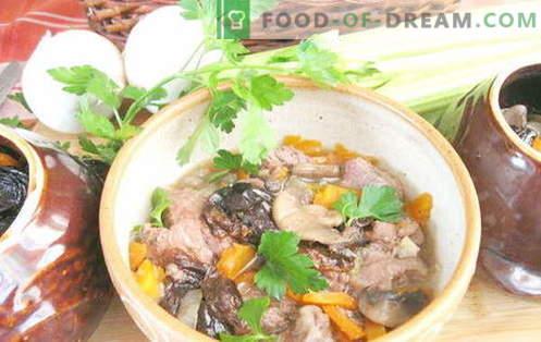 Porc în oală - cele mai bune rețete. Cum să gătești corect și gustos carnea de porc într-o oală.