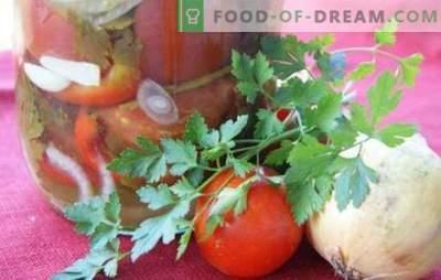 Salată de tomate cu ceapă pentru iarnă: o frumoasă compoziție dulce și picantă. Colecția de cele mai bune rețete de salată pentru iarnă cu roșii și ceapă