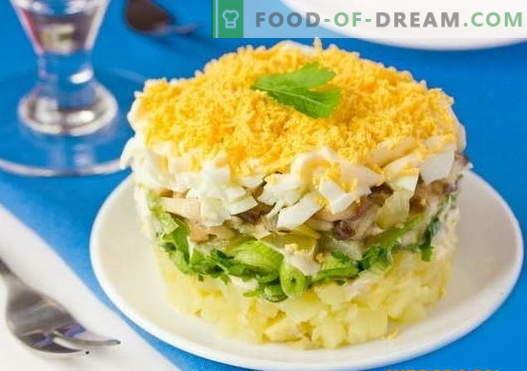 Salata stratificată cu ciuperci - o selecție a celor mai bune rețete. Cum să gătești în mod corespunzător și gustos salată stratificată cu ciuperci.