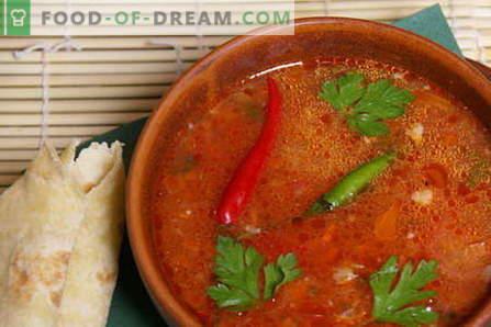 Carne de vită Kharcho - cele mai bune rețete. Cum să gătești carnea de vită kharcho corectă și gustoasă.