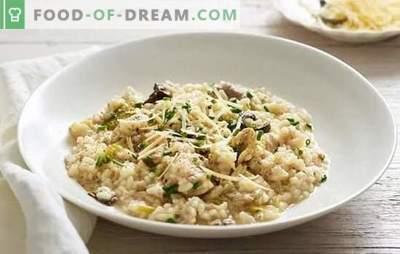 Risotto clasic - un fel de mâncare populară originar din Italia. Retete pentru risotto clasic cu ciuperci, carne de pui, legume si fructe de mare