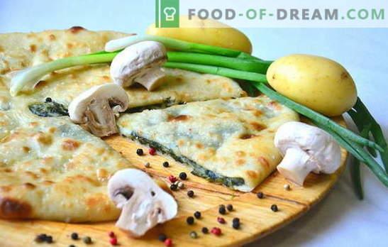 Placinta de cartofi și ceapă este o aromă de casă! Retete de diferite plăcinte cu cartofi și ceapă în cuptor și în multicooker