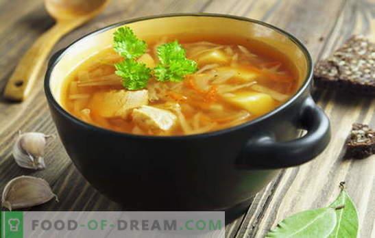 Rețete pentru supă din varză proaspătă, supă de varză, borș. Pește și carne