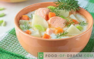 Sopa de pescado rojo, como adultos y niños. Recetas paso a paso para deliciosas sopas de pescado rojo: salmón, salmón, salmón rosado