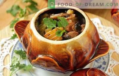 Iepure într-o oală: cu smântână, ciuperci, în vin. Frumoase treburi - carne de iepure tocană într-o oală