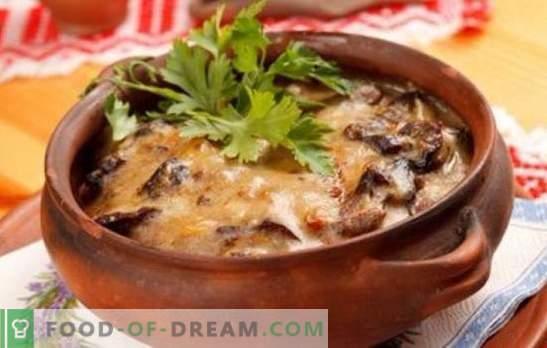 Cartofi cu ciuperci într-o oală - pentru viața de zi cu zi și sărbătorile! Retete diferite pentru cartofi cu ciuperci în vase